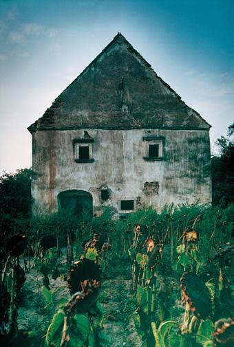 Presshaus im Weinviertel